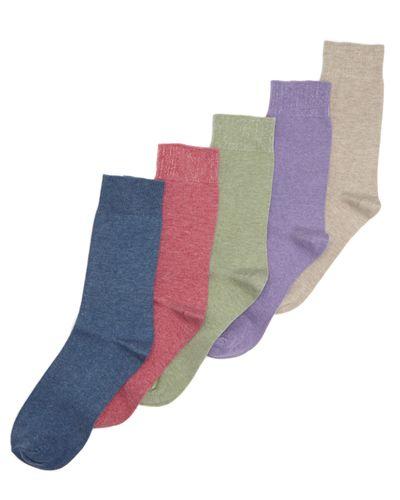 Modal Socks - Pack Of 5 thumbnail