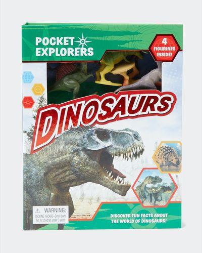 Pocket Explorers