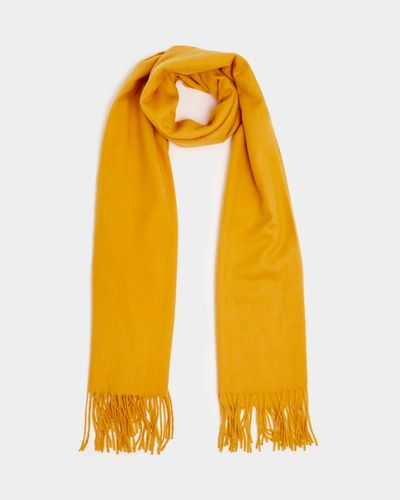 Gallery Soft Scarf