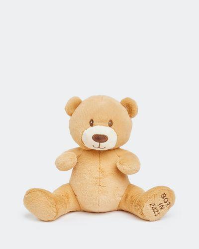 2021 Bear