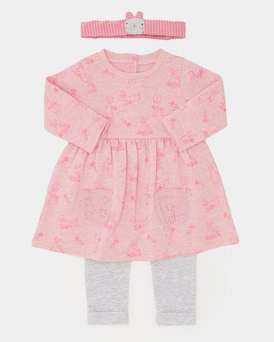 Three Piece Sweatshirt Dress Set (0-12 months)