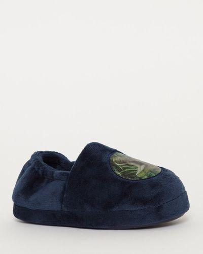 Lenticular Dinosaur Slippers