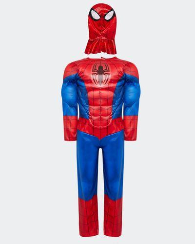 Spiderman Costume (2-8 years) thumbnail