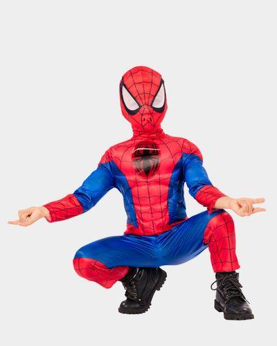 Spiderman Costume thumbnail