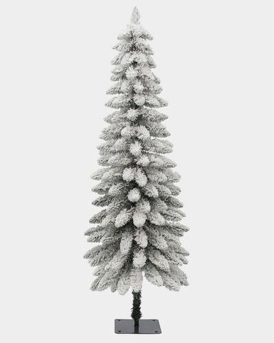 4.5ft Snowy Hazelwood Tree
