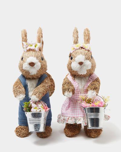 Bunny With Bucket