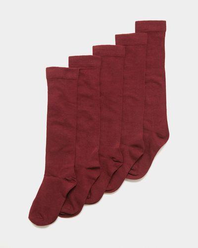Girls Cotton Rich Knee High Socks - Pack Of 5 thumbnail