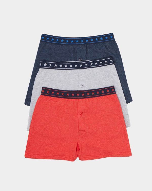 Jersey Boxer With Woven Waistband - Pack Of 3