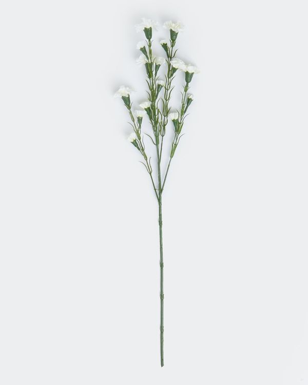 Multi Carnation