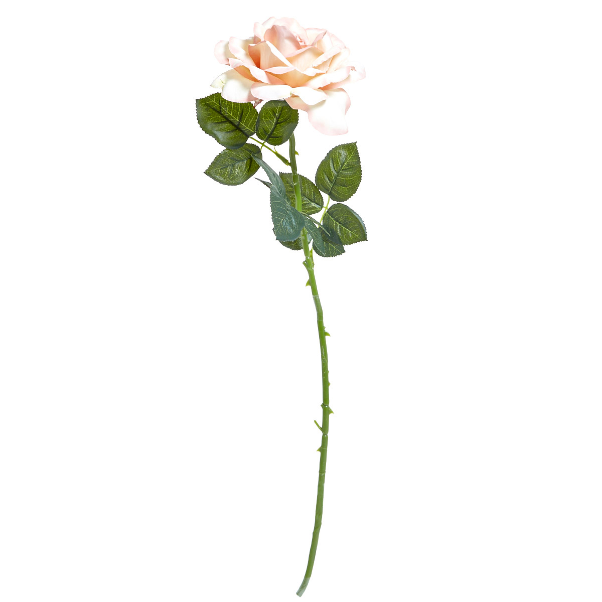 Dunnes Stores Pink Single Rose Stem