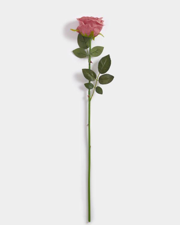 Single Rose Stem