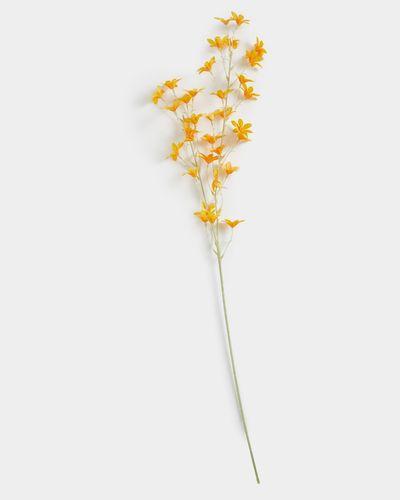 Micro Orchid Stem thumbnail