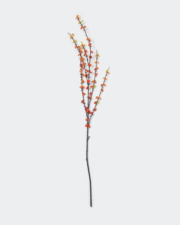 Plum Blossom Stem