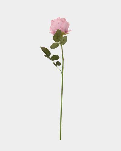 Small Rose Stem thumbnail