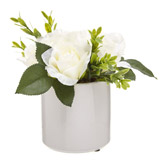 cream Roses In Round Pot