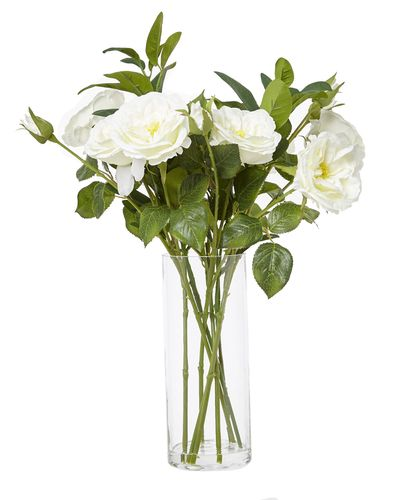 Roses In Tall Glass Vase