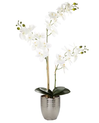 Silver Orchid Pot