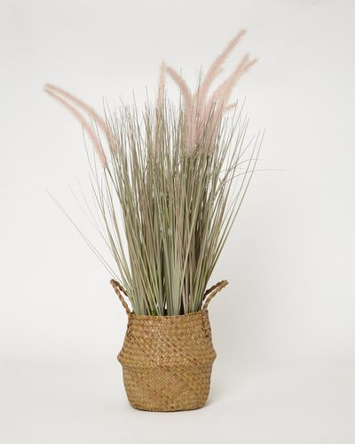 Wicker Grass Pot