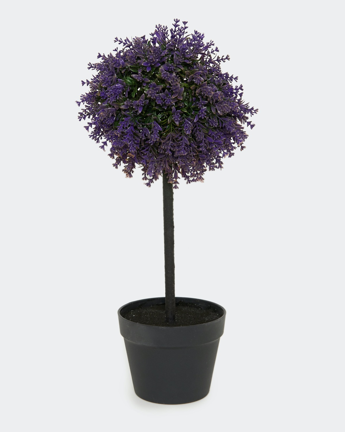 Dunnes Stores Lavender Lavender Topiary