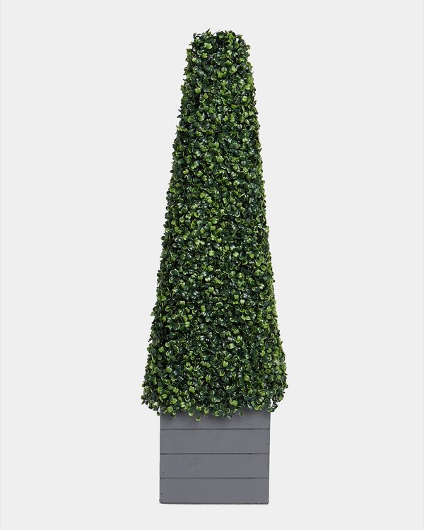 Cone Topiary In Wood Box