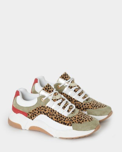 Savida Khaki Animal Trainers