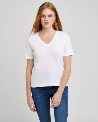 V-Neck Cotton T-Shirt thumbnail