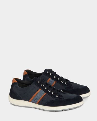 Paul Costelloe Living Navy Suede Trainers