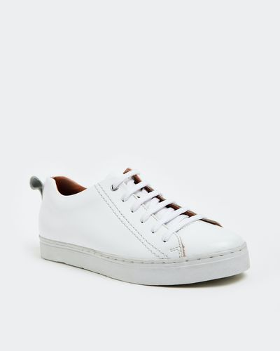 Paul Costelloe Living White Leather Trainer
