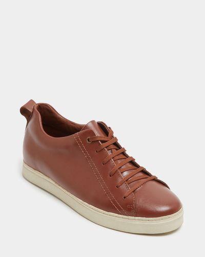 Paul Costelloe Living Tan Leather Trainer thumbnail