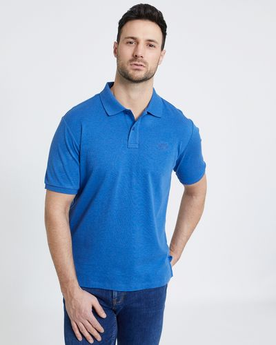 Paul Costelloe Living Denim Pima Polo