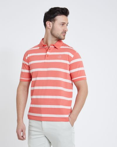 Paul Costelloe Living Coral Melange Stripe Polo