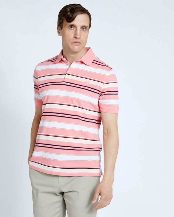Paul Costelloe Living Pink Grindle Stripe Polo